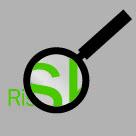 icon_risk